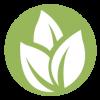 Grain To Green Logo utext
